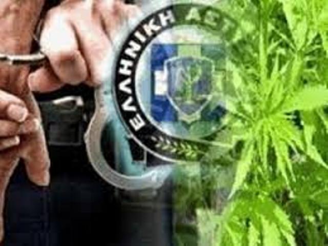 3 συλλήψεις ημεδαπών στη Θήβα για κατοχή κάνναβης και ηρωίνης